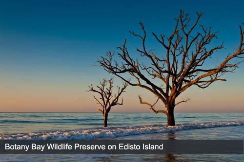Edisto Island Golf Resort