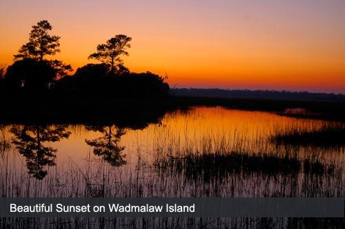 Wadmalaw Island Hotels Find Hotels In Wadmalaw Island Sc