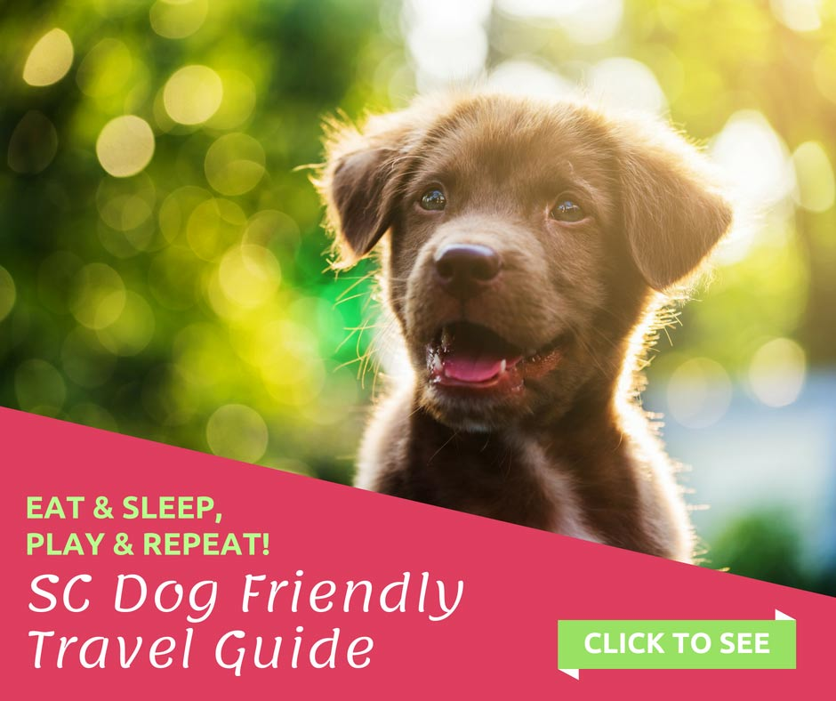 South Carolina Dog Friendly Travel Guide