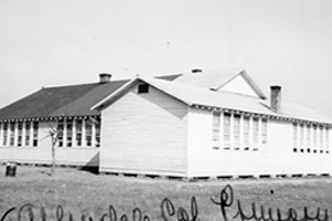 Allendale Colored Primary School