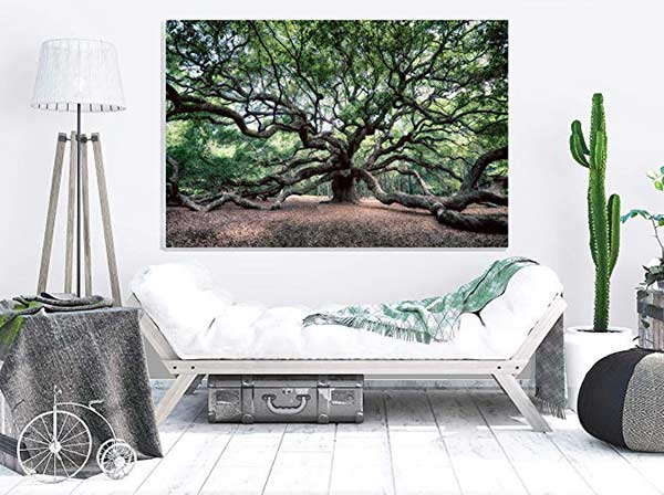 Angel Oak Print