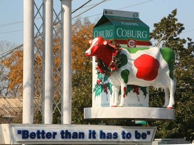 The Coburg Cow, Charleston