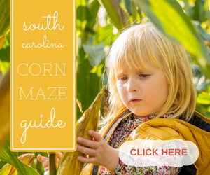 Corn Mazes in South Carolina