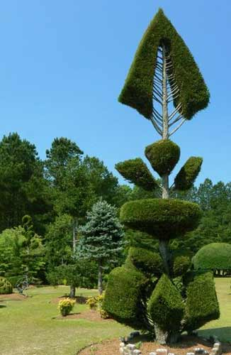 Fryar's Fishbone Topiary