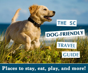 SC Dog Friendly Travel Guide
