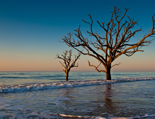 Botany Bay Plantation