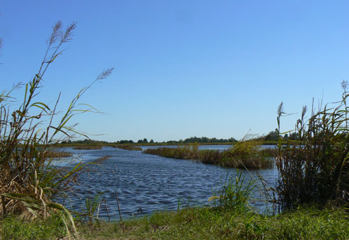 Ace Basin Ashepoo Combahee And Edisto Rivers South