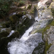 Eastatoe Creek